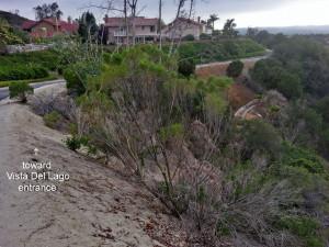 Barano Walk Trail in Mission Viejo
