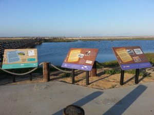 Bolsa Chica Parking Lot Notes and Information