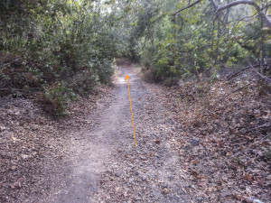 Arroyo Trabuco Trail