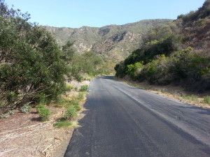 Aliso Woods heading south