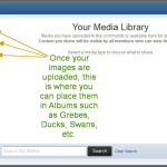 Where to choose an uploaded image from your Media Library