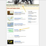 eBird Explore Data Page