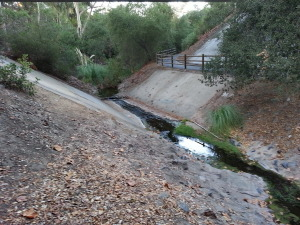 Creek below the bridge at Noveno and Los Alisos Blvd.